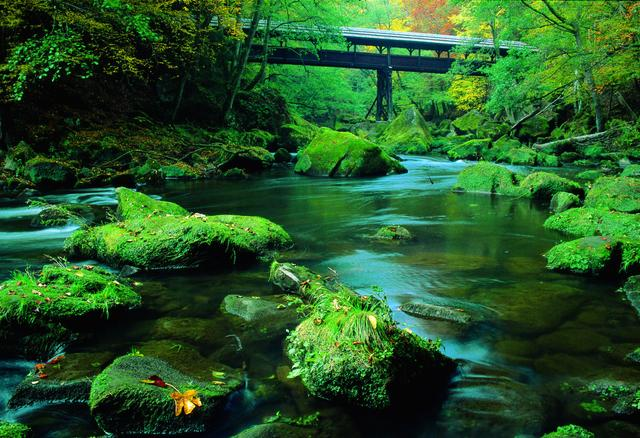 Irreler Wasserfälle - Camping Südeifel